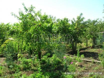 Summer house in Bulgaria garden 1