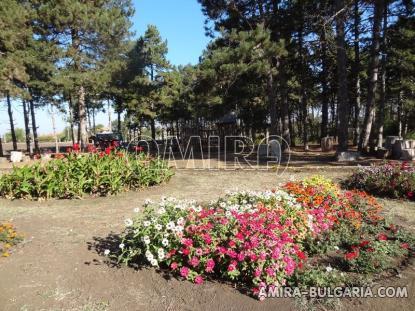 village park 2